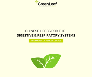 greenleaf acupuncture, chinese medicine, chinese herbs, tcm, cough, stomach ache