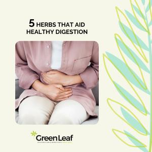 GreenLeaf Acupuncture Clinic, herbal medicine, tcm, blood stagnation, digestion